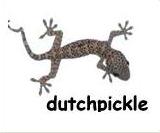 dutchpickle